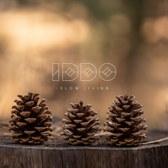 🎄 This week we will introduce pine cone ornaments on our products, because so many people use firs in houses at Christmas, but so many forget how beautiful the pine cones are. IDDO - Slow Living  #pinecone #furniture #furnitureshop #furnituredetails  #cone #fir #christmascoming #christmas #christmascone #baldai #balduparduotuve